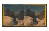 Pnini's Stereoscopic Views